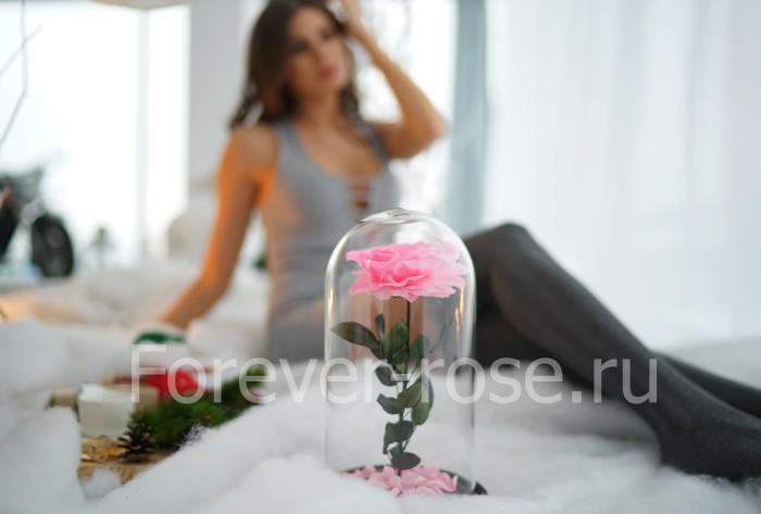 Роза в колбе в москве