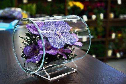 цветы в вакууме_фото 2