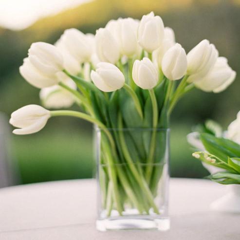 Тюльпаны в стекле_фото 1