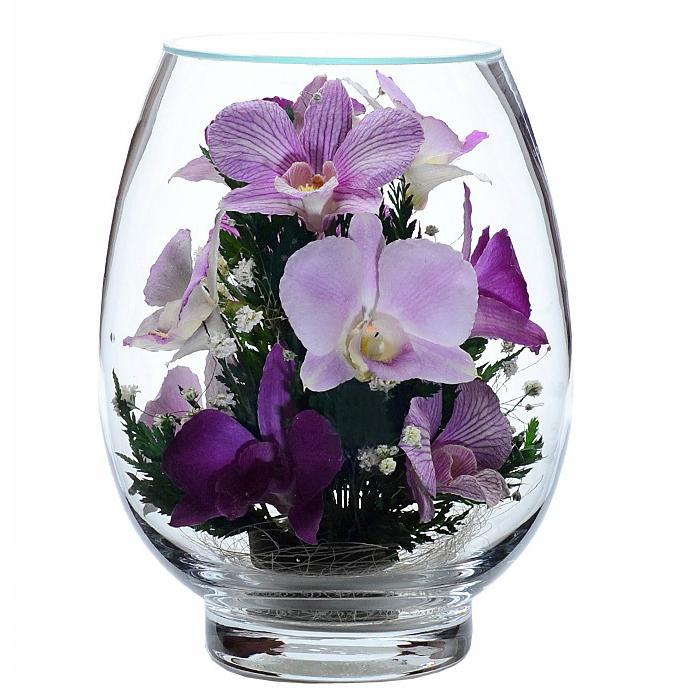 Орхидеи в стекле_фото 1
