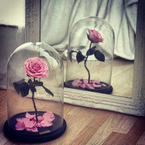 Розы в стекле_фото 1