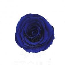 preserved-roses-little2