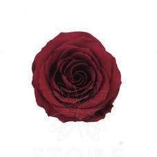 preserved-roses-little4