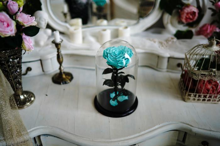 роза в вакууме
