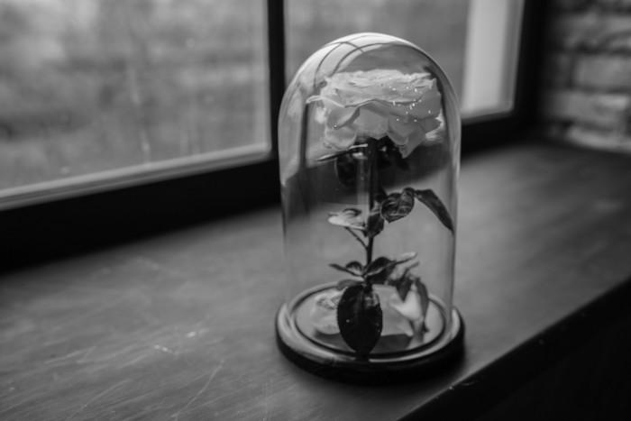 Роза в стеклянной колбе
