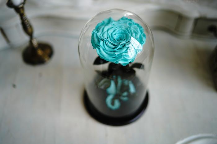 цветы в вакууме 3