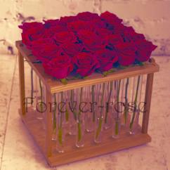 роз в пробирке (Копия)